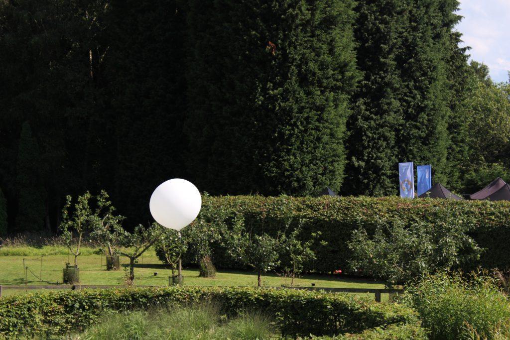 Bluedot arboretum