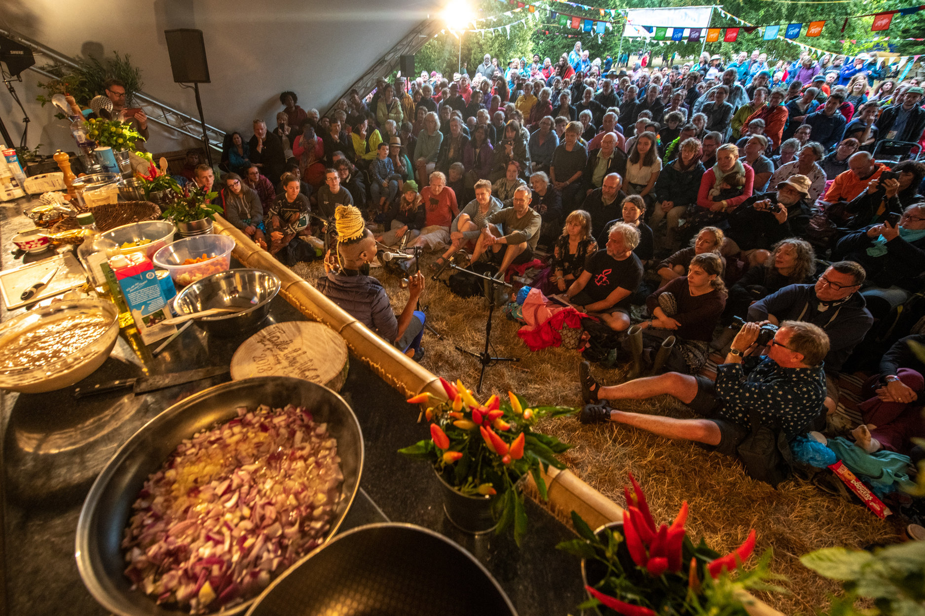 taste the world stage at womad