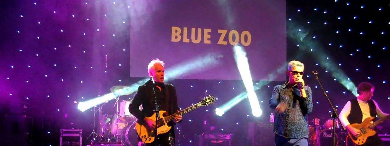 Blue Zoo promo
